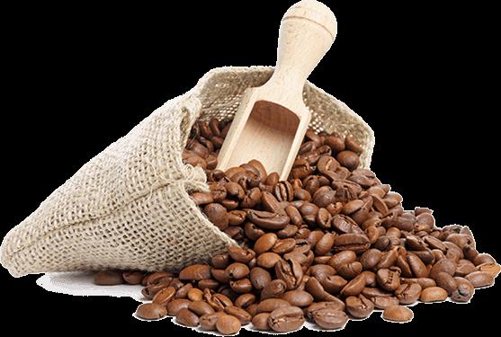 Vietnam Coffee Beans